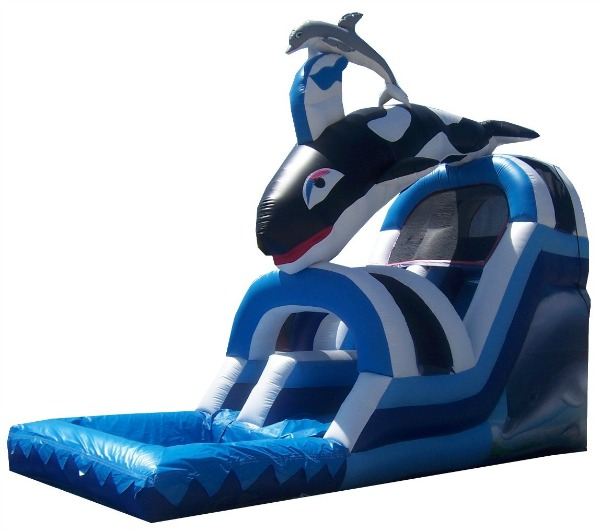 Orca-Dolphin Waterslide
